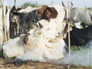 Les richesses humaines de Tchad