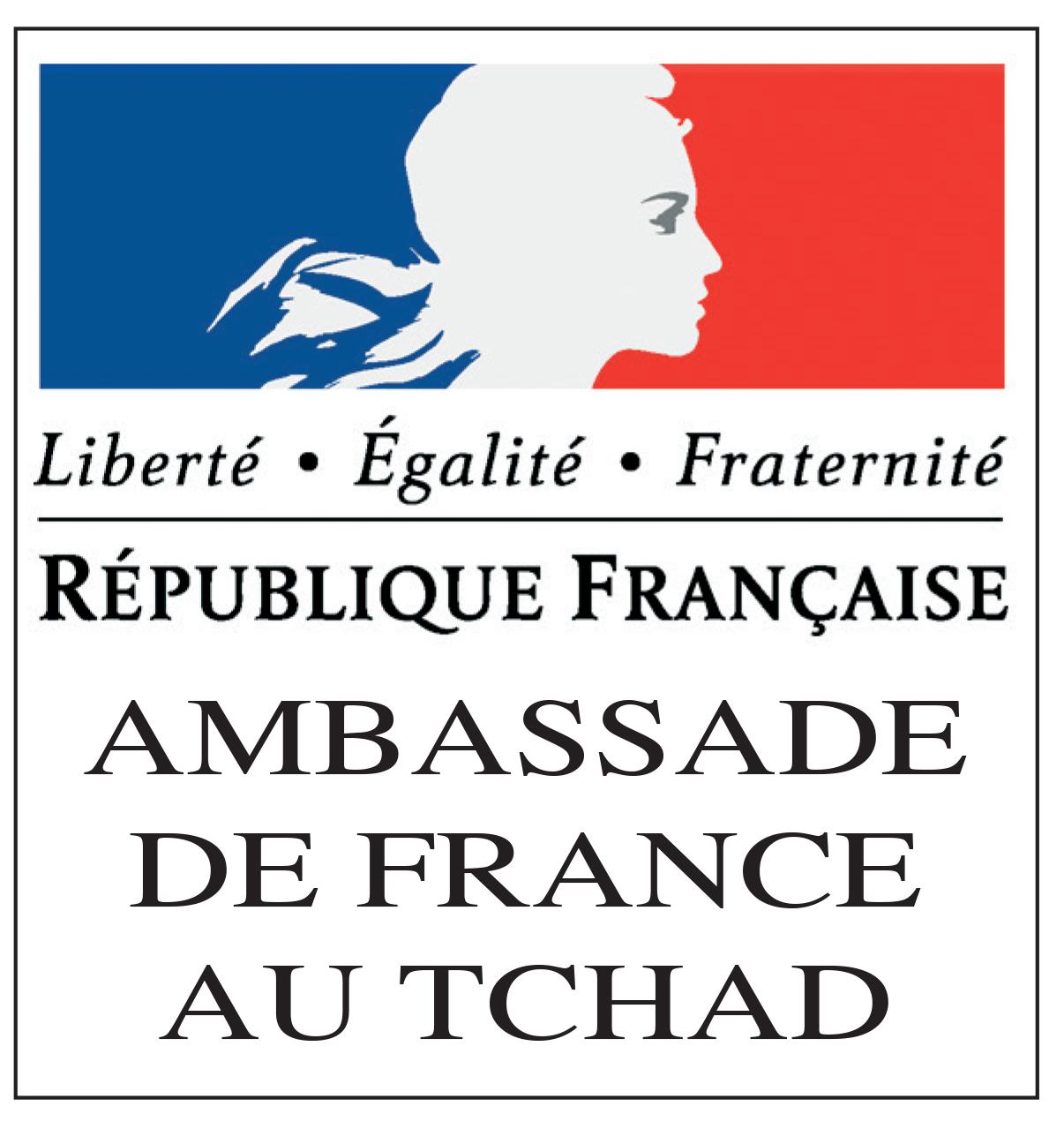 Logo Ambassade France